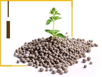 Fertilizers-feat-img